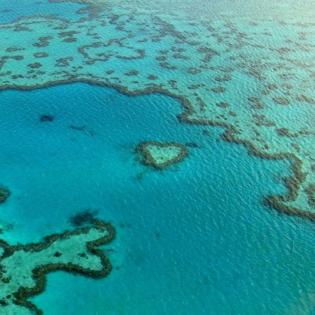 Photo of Great Barrier Reef Australia
